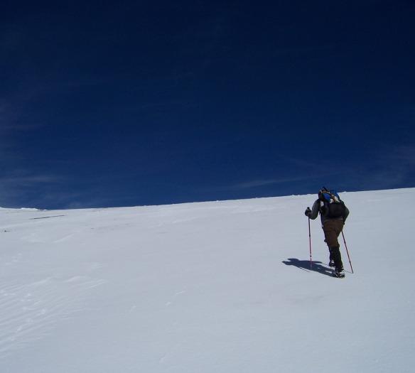 Mt. Harwood snow field