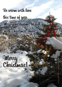 Christmas-Cheer-Greeting-Ca
