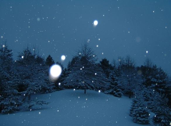 winter wonder by skrobola